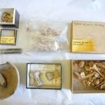 Trovati antichi reperti Sumeri