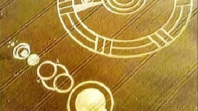 Cerchi nel grano in Olanda e Regno Unito_20141029174046