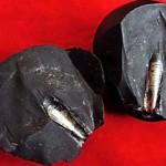 misteriose pietre in cina