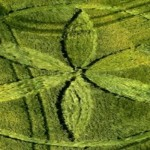 Crop Circle Wiltshire