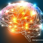 CUFOM cervello-620x400