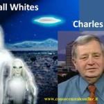 cufom-alieni-alti-e-bianchi