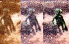 foto-de-aliencopia