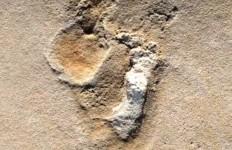 ufo-impronte-umane-di-5-milioni-di-anni