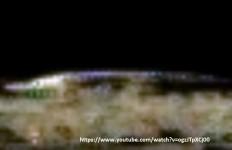 ufo astronave aliena 2