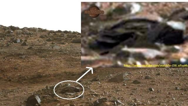 CAR MARS -