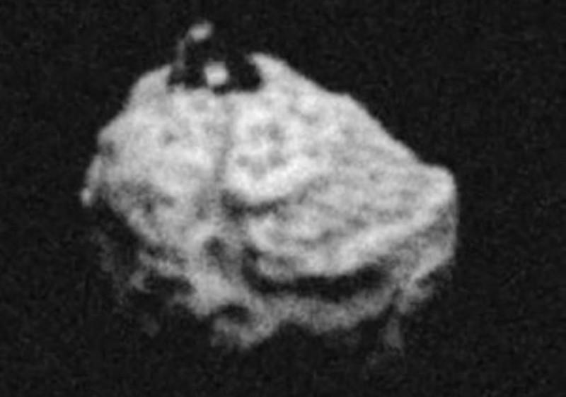 piramide 1999 RQ36