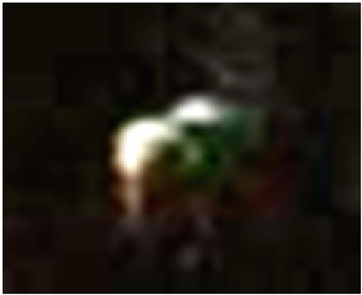 Fig.7. Altro interessante oggetto ripreso nei cieli di Peschiera Borromeo dalla sig.ra Giuseppina.