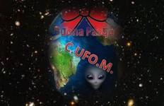 UFO BUONA PASQUA - 800X600
