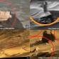 ufo marte 2 - Copia