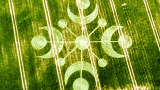 crop circles Buckland Down 3