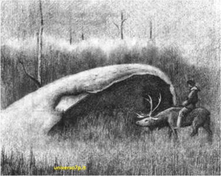 UFO. Cupole-in-Siberia-difesa-extraterrestre 1