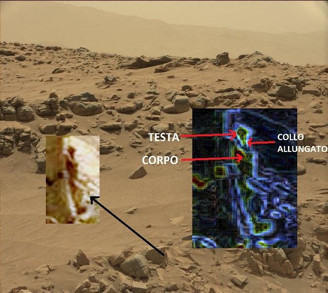 L'immagine presente sul sito NASA. Ho aggiunto delle elaborazioni.