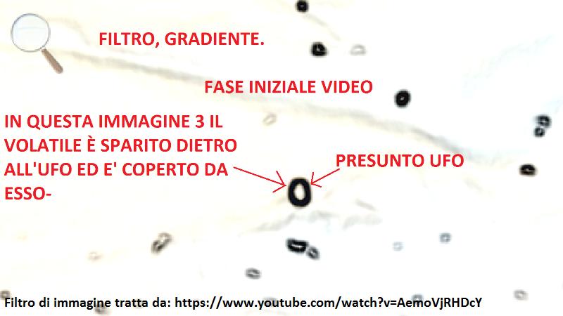 3 - IL VOLATILE E' COMPLETAMENTE COPERTO DAL PRESUNTO UFO
