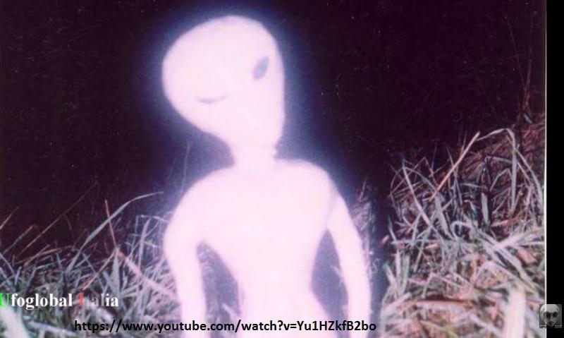 ufo podda alieno -