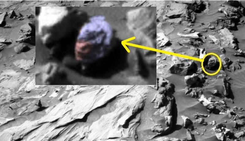 Foto postata sul sito della NASA