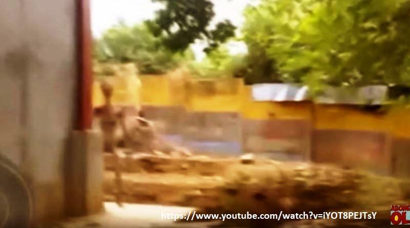 UFO VIDEO TURCHIA 4