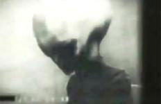 Un alieno grigio. Testa veramente enorme.