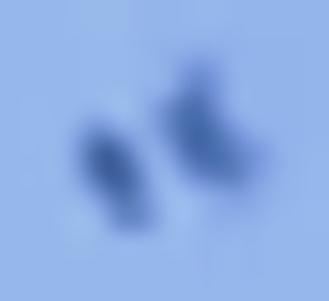 UFO TEXAS, CORPUS CHRISTI (2) - Copia